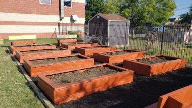 Six garden beds filled with soil.