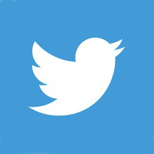 Twitter logo for Bain Capital City Year Partner Page